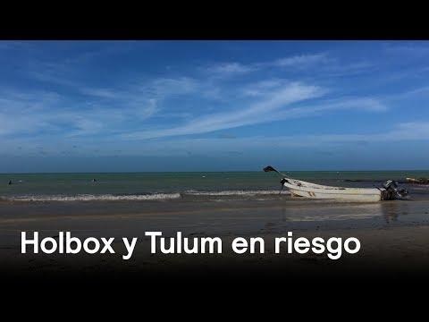 Holbox y Tulum: Áreas naturales protegidas pero amenazadas - Despierta con Loret
