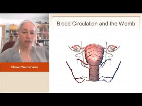 Improving Blood Circulation to Womb, Blood Moving Herbs, Sharon Weizenbaum, Acupuncture Fertility