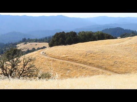 Santa Cruz Bicycles' Steve Peat and Josh Bryceland on the New Chameleon