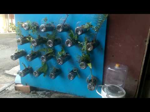 Build my green wall.How to use PET bottles and waste mop and waste board.建造我的綠牆.使用寶特瓶及廢拖把跟廢木板