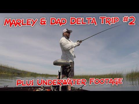 Taking my Daughter Fishing Part 2