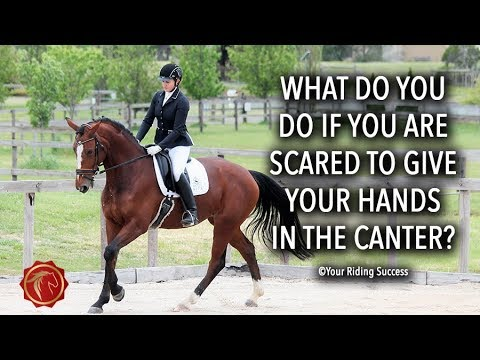 What do you do if you are scared to give your hands in the canter? - FearLESS Friday TV Ep 59