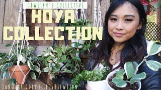Jewelyn's Collective: Hoya Collection | January 2019 | ILOVEJEWELYN