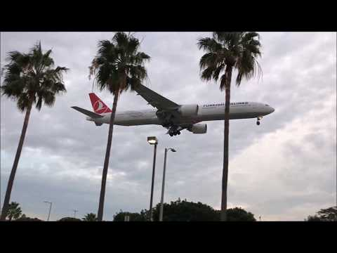 Planes Landing at LAX  - Los Angeles International Airport