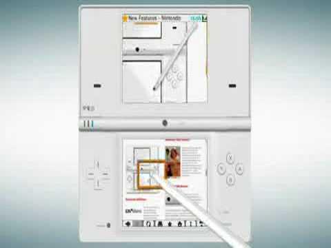 NIntendo DSi browser 2