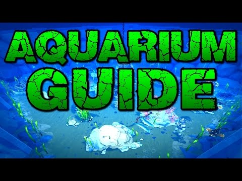Runescape - Aquarium Guide & Overview! New Fishing Bonuses!