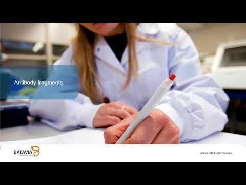 Webinar: Production of Therapeutic Antibodies on E. coli - Batavia Biosciences