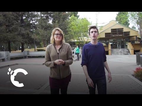UCLA Law School: Academic Insights