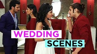 Tanvi And Kabir To Get Married On Naagin!