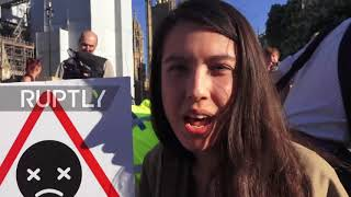 UK: Dozens block Westminster road over