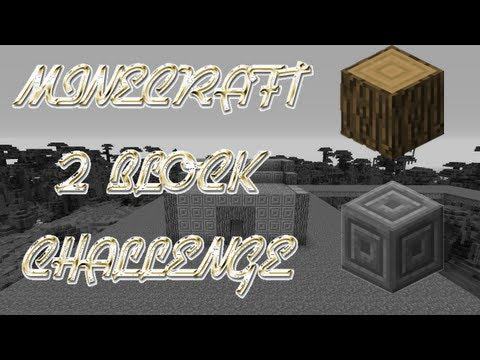 Minecraft 2 Block Challenge - Oak Logs & Chiseled Stone Bricks