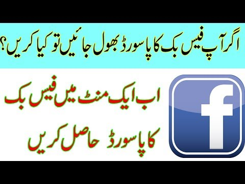How To Recover Facebook Forgotten Password In One Minute