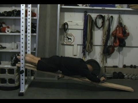 Standing Ab Wheel Rollout Tutorial