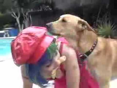 Xxx Mp4 A Dog A Lady And A Bone Twisted 3gp Sex