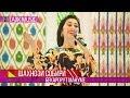 Download  Шахнози Собири - Бекарорат манум | Shahnozi Sobiri - Beqarorat manum (Consert) MP3,3GP,MP4