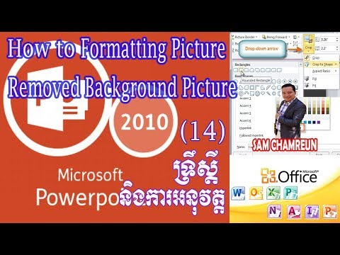 Ms PowerPoint 2010 | How to Format Picture and Removed Background in PowerPoint 2010