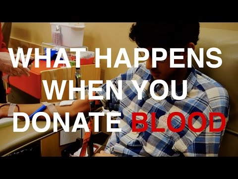 What Happens When You Donate Blood