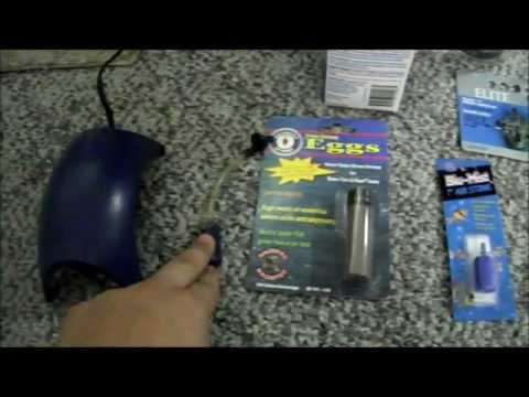 How To: Hatch Brine Shrimp