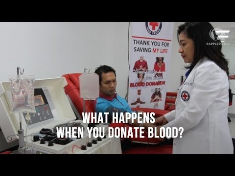 What happens when you donate blood?