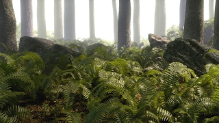 Creating Realistic Ferns in Blender