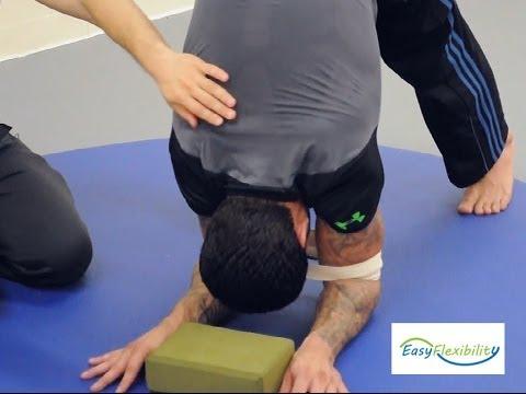 ForearmStand Mastery in Yoga How to do the Pincha Mayurasana Forearm Balance