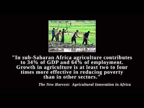 Calestous Juma on GMO economic benefits to African Farmers