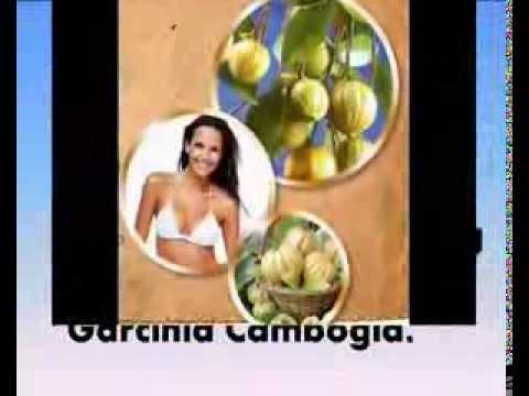 Garcinia Cambogia Australia - Where To Buy Garcinia Cambogia In Australia