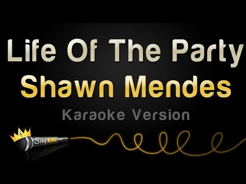 Shawn Mendes - Life Of The Party (Karaoke Version)