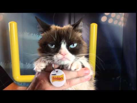 Grumpy Cat's Worst Touchdown Dance Ever!
