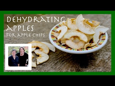 How To Dehydrate Apples: How to Dry Apples for Apple Chips to Preserve Your Apple Flavor
