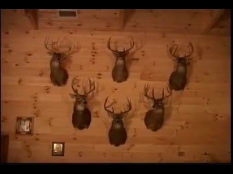 Southern Illinois Hunting Lodge - Rocky Branch Outfitters