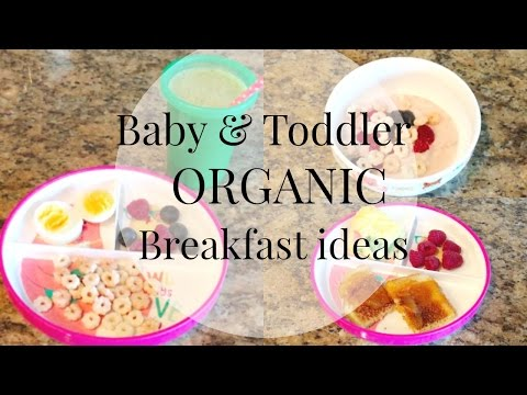 Breakfast Ideas for Baby & Toddler!