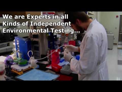 Mold Testing Fremont