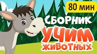 Download СБОРНИК! Развивающие мультики про животных для детей Video