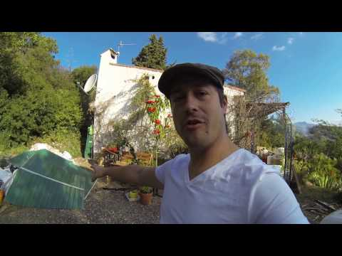 New place Tour, Veggie Garden & Greenhouse
