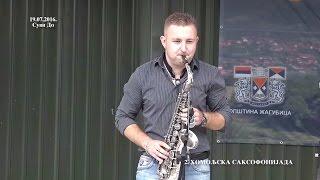 Dobrica MilanoviĆ   Pobednik Homoljske Saksofonijade 2016