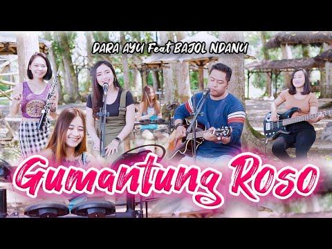 Download Lagu Dara Ayu Gumantung Roso Ft. Bajol Ndanu Mp3