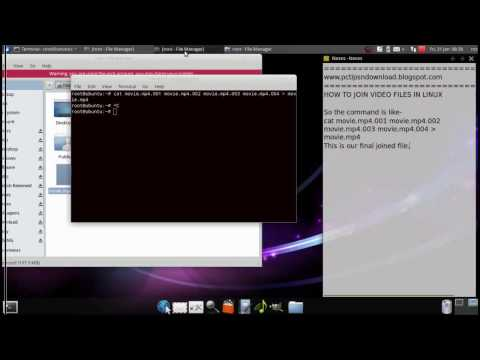 How to join splitted file or avi video through linux terminal