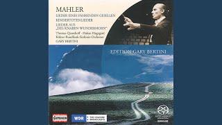 Lieder Eines Fahrenden Gesellen Songs Of A Wayfarer Version For Voice And Orchestra  No