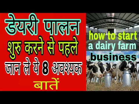 Dairy Farming,Dairy Farm,डेयरी पालन शुरू करने से पहले जाने ये 8 महत्वपूर्ण बाते पशुपालन से बने लखपति