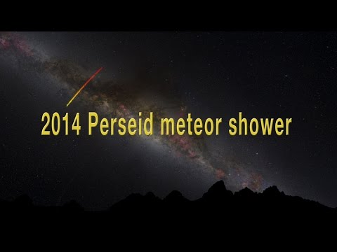 The 2014 Perseid meteor shower