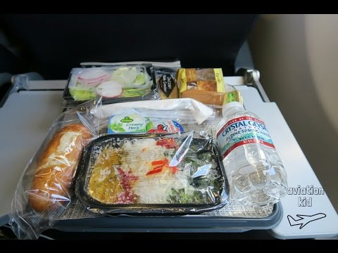 AMERICAN AIRLINES ECONOMY CLASS FLIGHT REVIEW   A330-200   FRANKFURT - CHARLOTTE