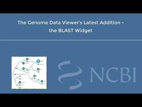 NCBI's Genome Data Viewer - Introducing the BLAST Widget