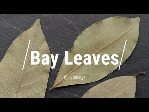 All About Bay Leaves || Le Gourmet TV Recipes