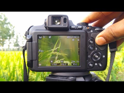 Nikon coolpix B700 P900 B500 Best Focus (MF V AF) Setting  For video Shooting Tutorial 2018