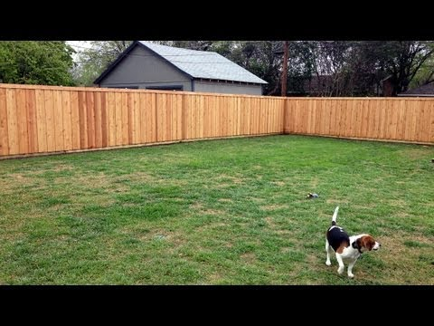 Our Adventure Building a Western Red Cedar Privacy Fence in Dallas, TX