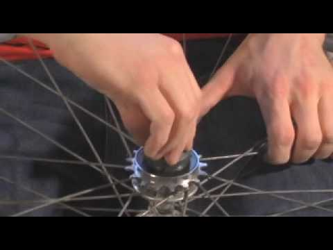 Removing and Installing a Freewheel