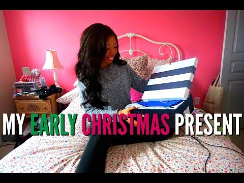 MY EARLY CHRISTMAS PRESENT, NET-A-PORTER SHOPPING HAUL & A VERY SPECIAL GUEST | VLOGMAS DAY 19