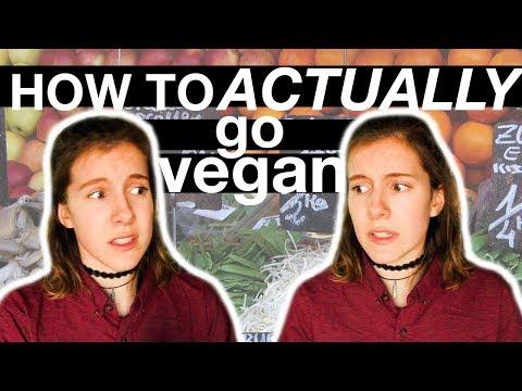 how to actually go vegan (realistic advice)