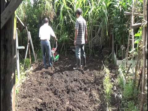 CY80 Mini tiller with 6 rotary 5HP tilling blade in vegetable field (CHING YEE) 농업 기계 中耕機